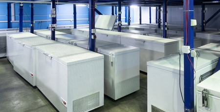 Many white small refrigerators stand in rows in a bright warehouse. Refrigeration Department of the restaurant