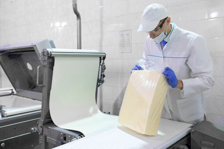 technologist make an inspection of dairy products while standing near production line at the department of dairy factory
