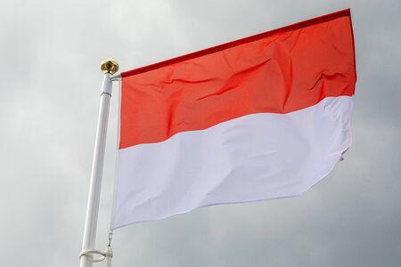 Monaco flag waving in the wind in the sky
