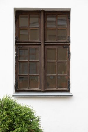 White wall with frayed wooden window and green bush