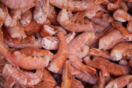 Organic grown shrimps chilled in ice, top view. abstract background and food texture