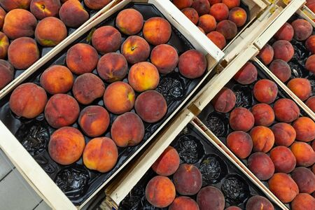Fragrant juicy nectarine on market tray or box. For food illustration, agriculture purpose background