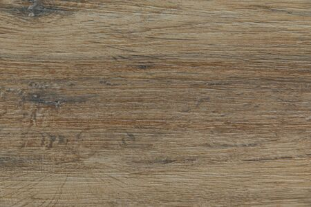 Textured with roughness and fibre, sharpened floor or wall natural coverage. Interior or exterior design purposed.