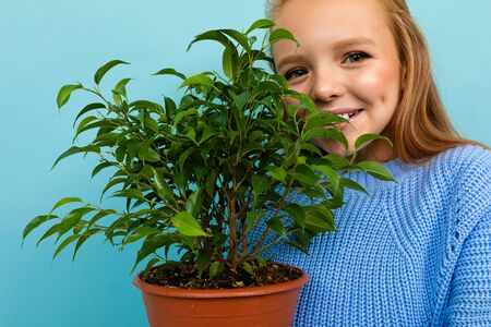 Portrait of little caucasian girl in blue t-shirt with long hair holds a green plant isolated on blue background. Banco de Imagens