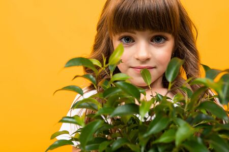 portrait of a girl holding a flower in a pot in her hands on an orange background close-up.