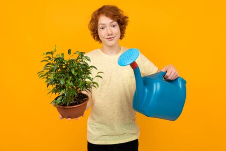 teenage boy gardener holding a watering can and a houseplant in a pot on a yellow background with copy space. Zdjęcie Seryjne