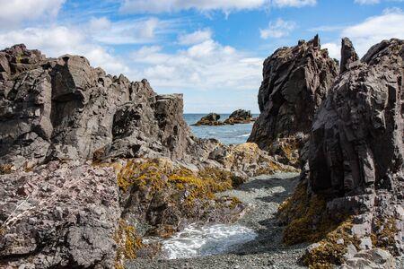 newfoundland: Rocky coast with tide pools in summer in Newfoundland, Canada
