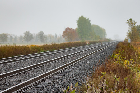winnipeg: Twin Tracks Leading to Foggy Autumn Trees