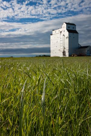 Wooden Grain Elevator on Canadian Prairie Grass Stock Photo
