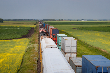 freight train: Two Trains Passing Through Vibrant Fields in Canadian Prairie Stock Photo
