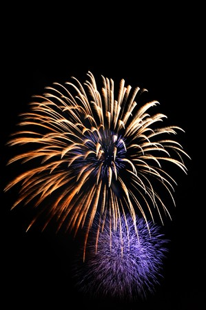 The big firework look like the flower photo