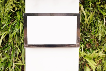 Black frame television on the vertical garden wall. photo