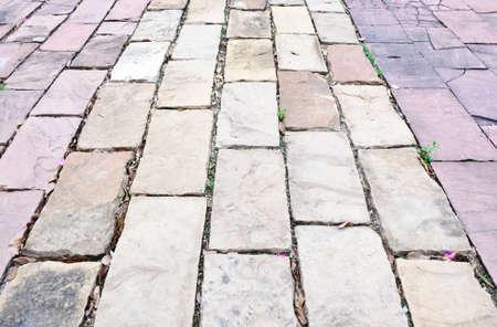 Stone brick way inside the natural resort  photo