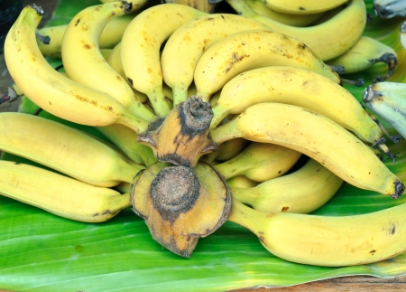 Fresh banana on the banana leaf in Thai market  photo