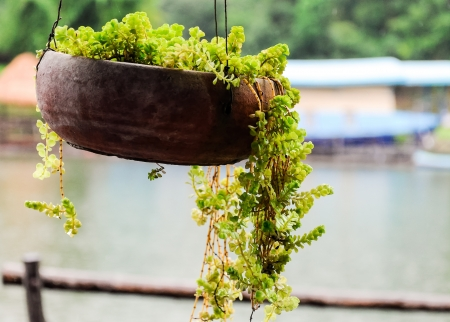 Old pot for little plant is hanging outside the floating house  photo