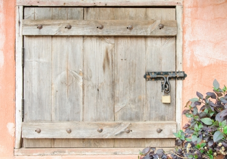 Wooden door for keeping the garden tool  photo
