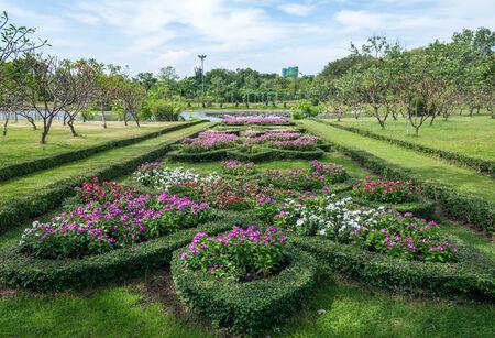Flower shrub near the lake of urban park  photo