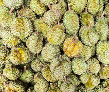 Ripe durian for sale in the Thai market photo