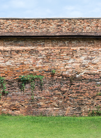 thialand: Old brick wall with plant of the large temple in Thialand.(Public area not required Property Release)