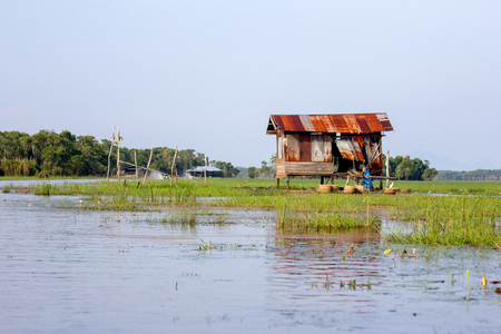 swampy: The old waterfront cottage in the countryside.Old zinc roof house in Thailand