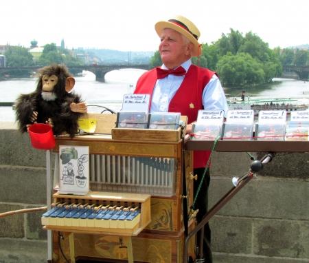 プラハ, チェコ共和国 - 2011 年 6 月オルガン プレーヤー ミュージシャン大道プラハで猿と