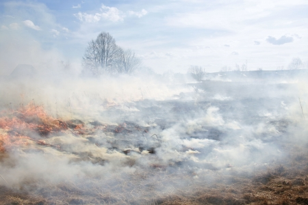 wastelands: meadow fire sends out large smoke clouds after burning a grass wastelands, natural disaster, clouds of smoke Stock Photo