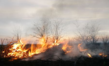 wastelands: meadow as dry as a bone, natural conflagration, natural disaster, bushes in fire on evening sky background , burning wastelands, environmental damage Stock Photo