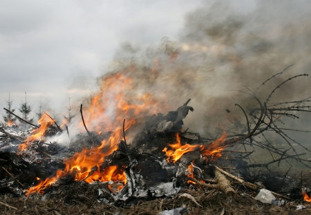 illegal burn refuse, poisonous smoke, fire and fumes, clouds of toxic smoke