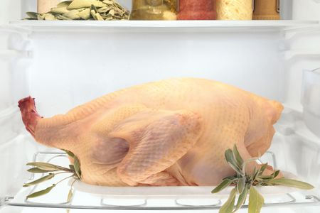A fresh raw plucked turkey in refrigerator, become tender