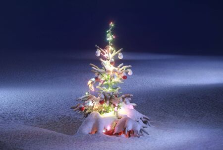 christmas tree on night background, christmas tree with colored lights photo