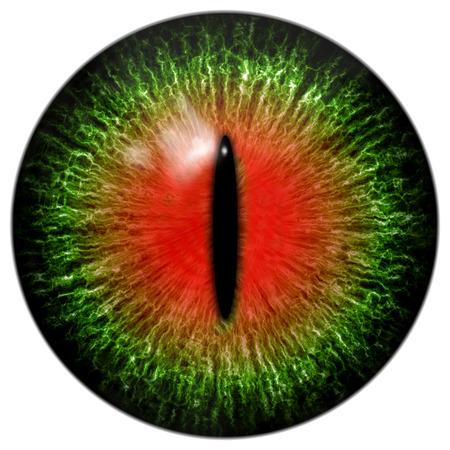 eyes green: Gato o reptil de ojos rojos verde con pupila estrecha Foto de archivo