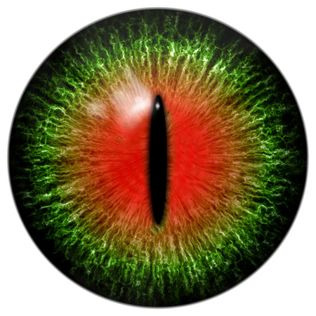 abstract eye: Green red cat or reptile eye with narrow pupil Stock Photo