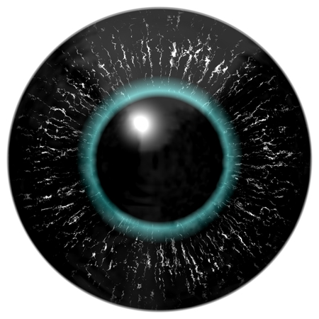 contact lens: Black alien, bird or reptile eye with blue circle around the pupil Stock Photo