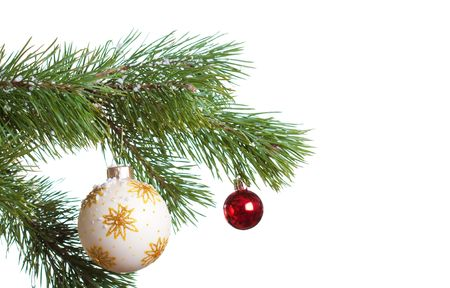 Christmas fir with decoration ball isolated photo
