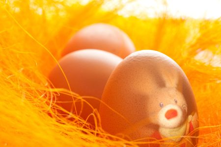 Easter eggs with hare into orange nest Stock Photo