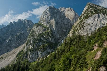 Donnerkogel Gosaukamm Mountains w Austrii z drzew zielonych