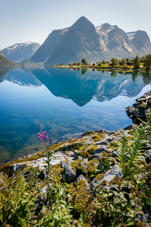 Norway fjord mointains with reflection in summer Standard-Bild