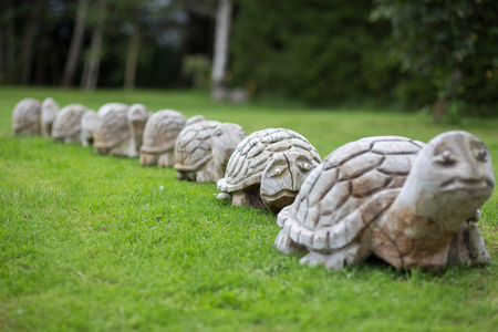 Tortoise wood scilptures on the grass