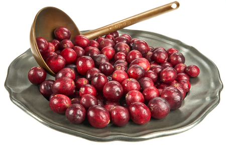 Fresh cranberry on an old metal plate, on white background Imagens