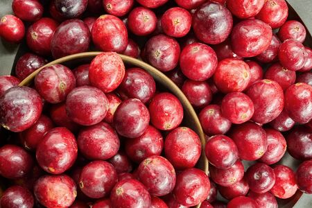 Fresh cranberries in a big close-up Stock Photo