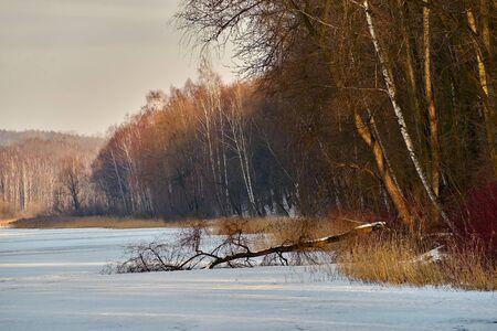 겨울-얼어 붙은 호수, Rogoznik, 폴란드