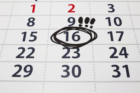nonworking: Date on a calendar, organizer, planning, symbol,