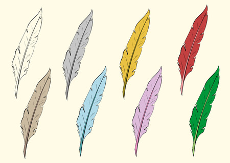 negligent: Clipart feathers of birds of different flowers and contour
