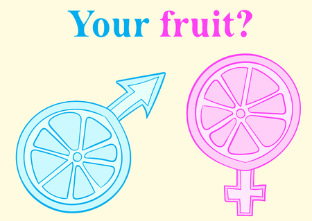 female sign: Male and female sign in the form of a citrus Illustration