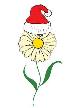 christmas cap: Yellow flower a camomile in a Christmas cap Illustration
