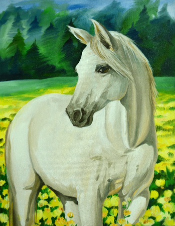 White horse - oil painting Archivio Fotografico