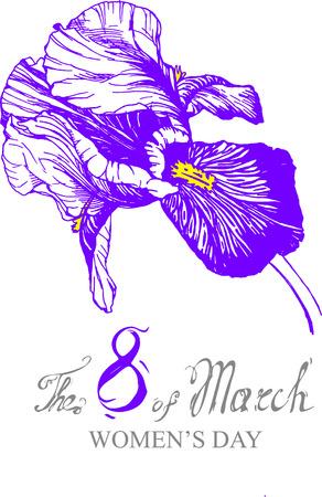 vector irises violet flower illustration isolated, drawn