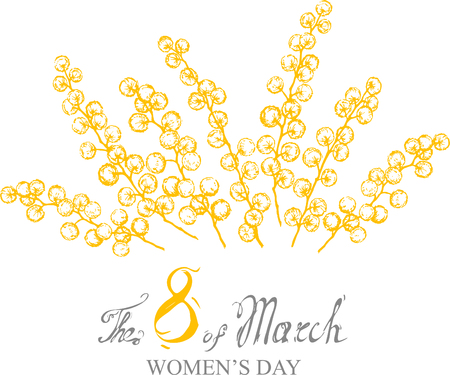 vector mimosa yellow flower illustration on March 8