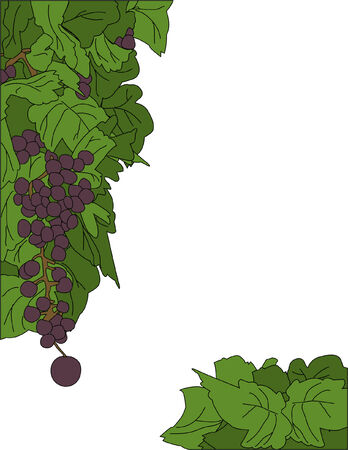 bordure de page: Une usine de raisin page fronti�res