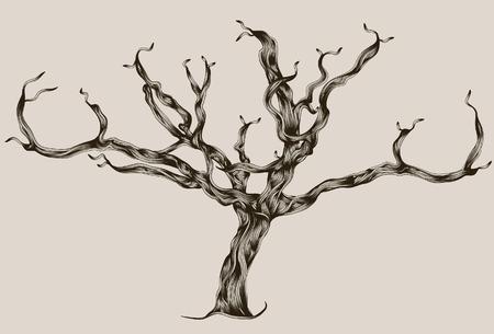 tree dead: Mano Illustrated stilizzata disegnata albero morto  Vettoriali